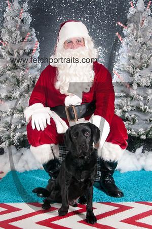dogaholics_santa_2016 401