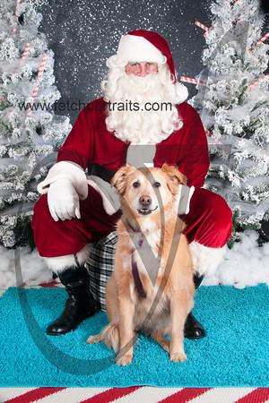 dogaholics_santa_2016 437