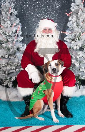 dogaholics_santa_2016 850