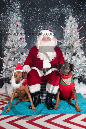 dogaholics_santa_2016 680