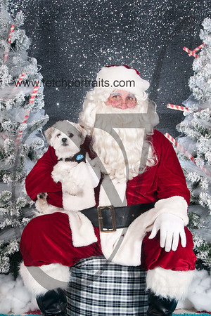 dogaholics_santa_2016 752