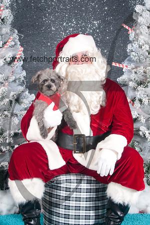dogaholics_santa_2016 055