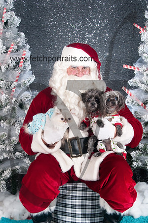 dogaholics_santa_2016 336