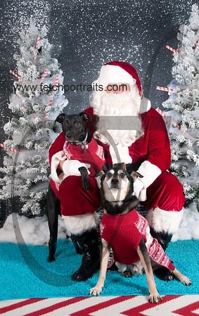 dogaholics_santa_2016 420