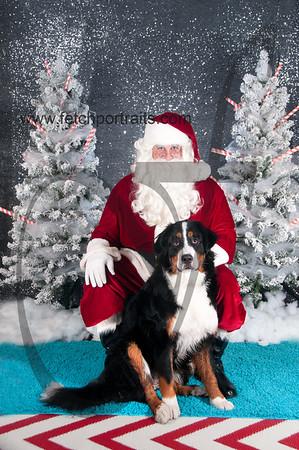 dogaholics_santa_2016 252
