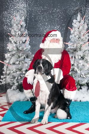 dogaholics_santa_2016 028