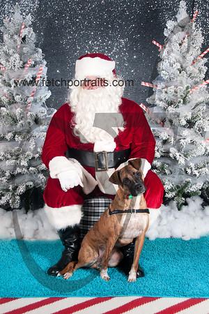 dogaholics_santa_2016 644