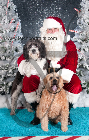 dogaholics_santa_2016 476