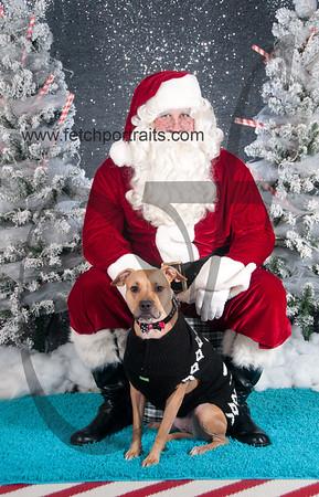 dogaholics_santa_2016 134
