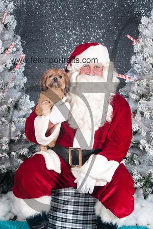 dogaholics_santa_2016 165