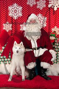 santa2015_dogaholics_saturday 192
