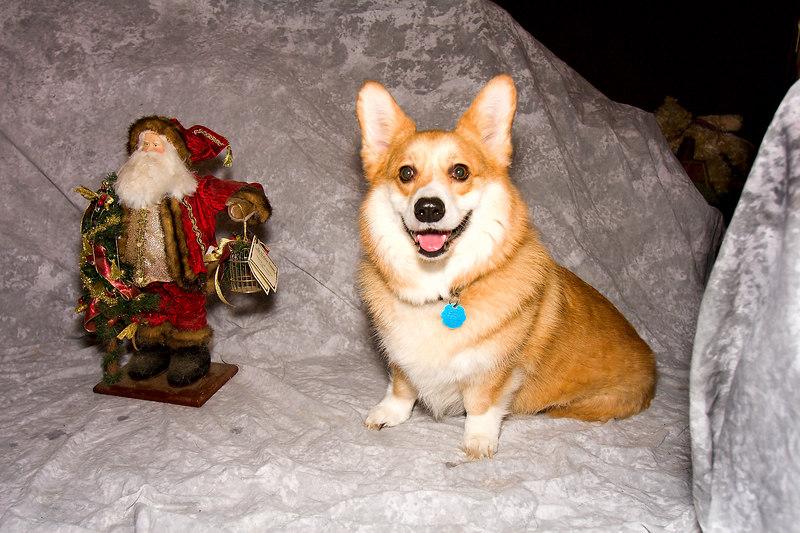 Skye and Santa Claus