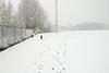 Pim en Fabio sneeuw