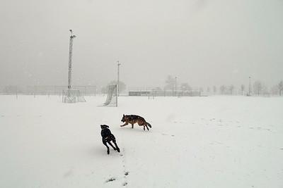 Fabio en Pim rennend door de sneeuw op het voetbalveld
