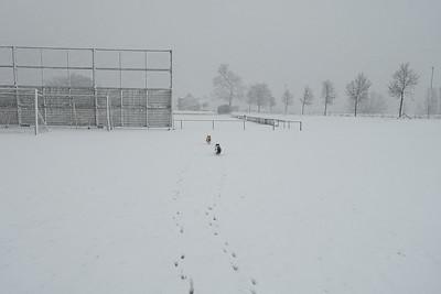 Jut en Jul in de sneeuwstorm