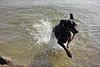 Fabio met zijn stok in het water