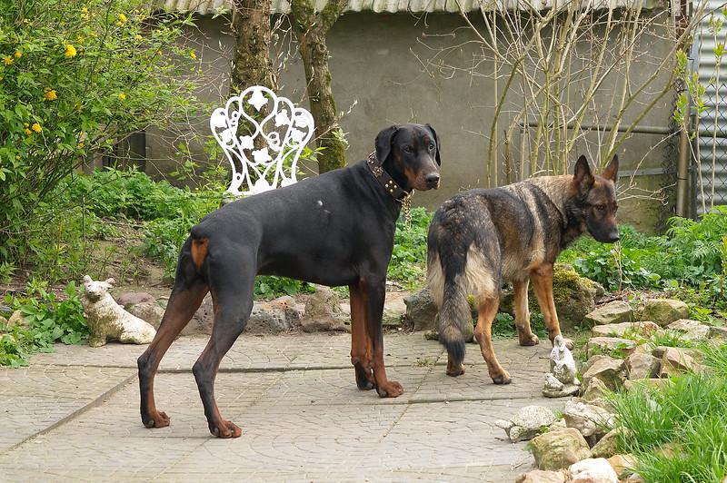 Fabio en Kees