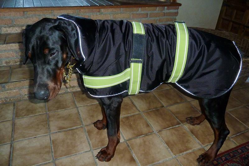 Fabio in zijn nieuwe winterjas