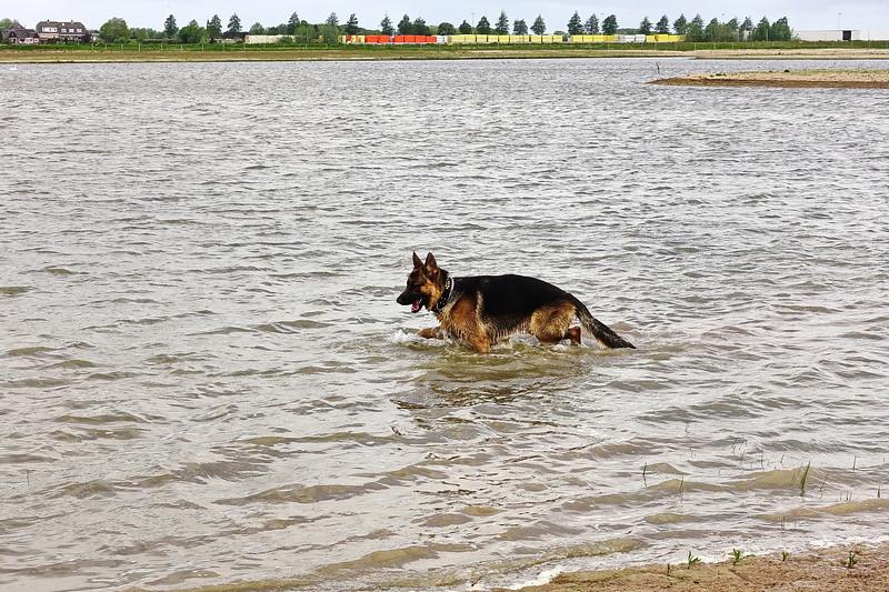 Pim in het water