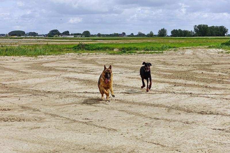 Pimmie en Fabio in het Munnikenland