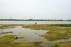 Pimmie in het water Munnikenland4