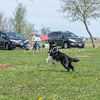 UpDog Challenge - Southtown K9 - Sunday, April 16, 2017