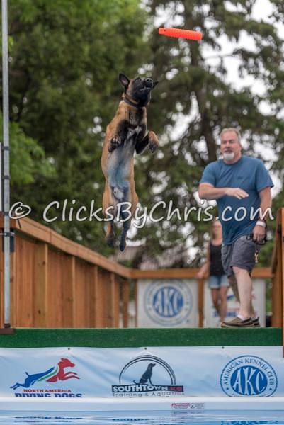 NADD / AKC Trial - Saturday, May 16, 2015 - Frame: 6911
