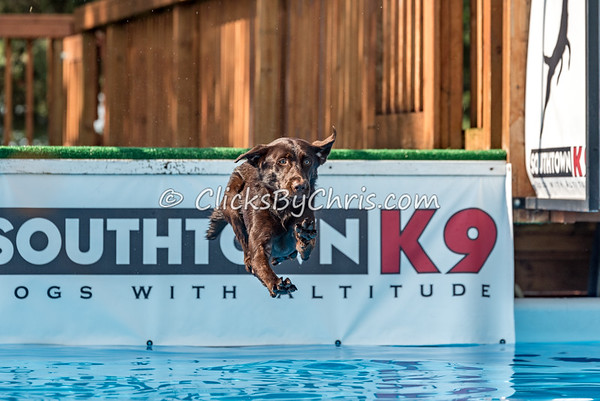 Dock Diving Competition - Southtown K9 - Sunday, July 24, 2016