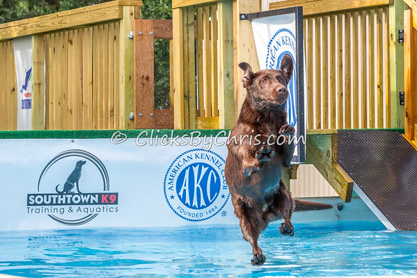 NADD-Splash5-20140810-0008