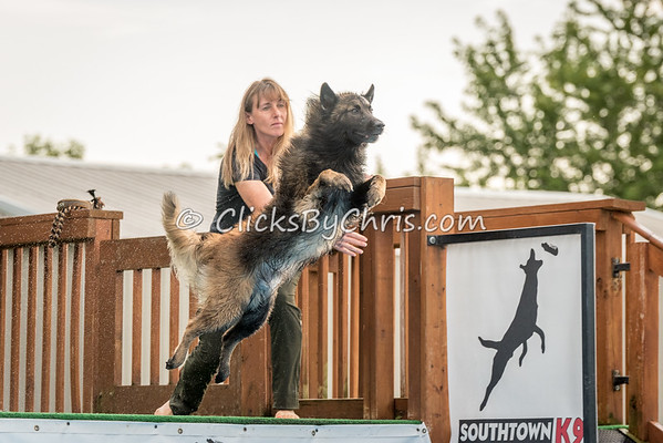NADD / AKC National Qualifier Dock Diving Trial - Southtown K9 - Friday, Aug. 25, 2017