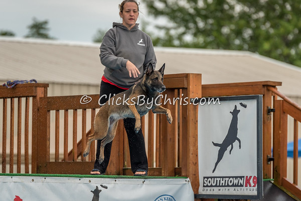 NADD / AKC National Qualifier Dock Diving Trial - Southtown K9 - Sunday, Aug. 27, 2017