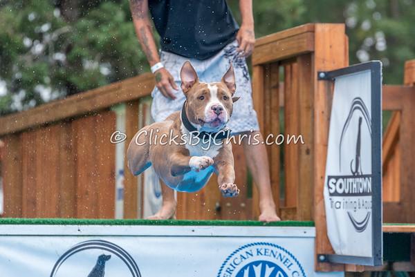 NADD / AKC Trial - Saturday, Sept. 5, 2015 - Frame: 4278