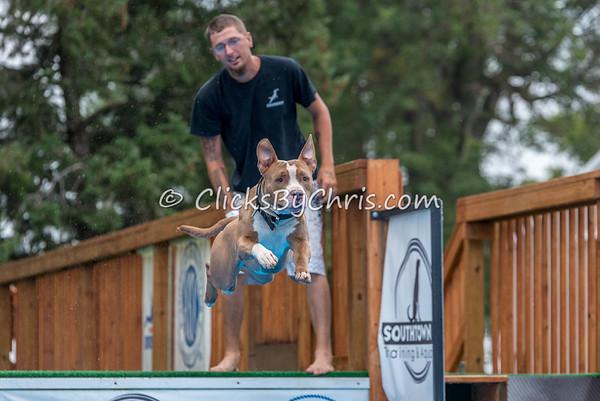 NADD / AKC Trial - Saturday, Sept. 5, 2015 - Frame: 4275