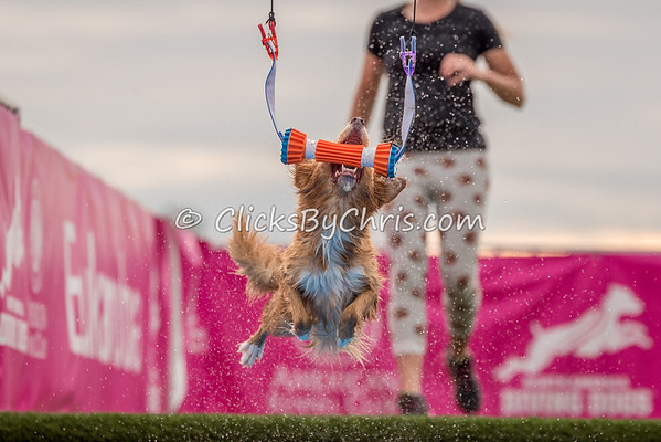 Eukanuba Performance Games - Roberts Centre - Friday, Sept. 15, 2017