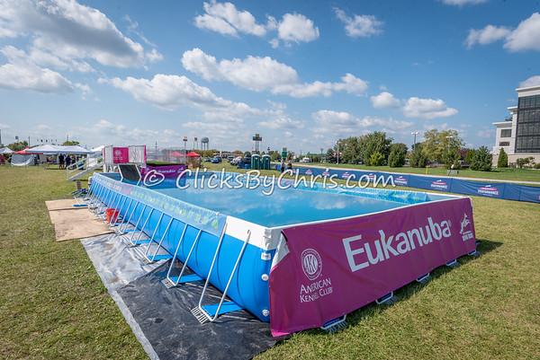 Eukanuba Performance Games - Roberts Centre - Sunday, Sept. 17, 2017