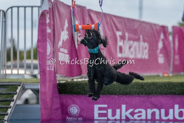 Eukanuba Performance Games - Roberts Centre - Thursday, Sept. 14, 2017