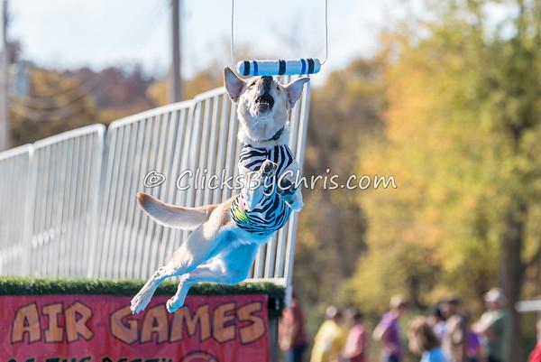 Ultimate Air Games - Thursday, Oct. 22, 2015 - Frame: 4345
