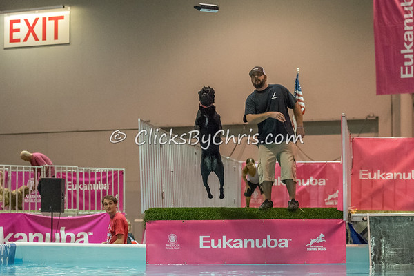 NADD / AKC Eukanuba National Championship - Orange County Convention Center - Saturday, Dec. 16, 2017