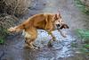 Zoe illustrates the joy of a mud puddle