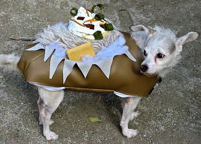 Baked Potato Dog