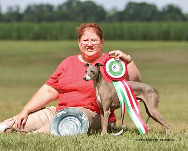 MAIGC Racing / coursing / Obedience Win Photos