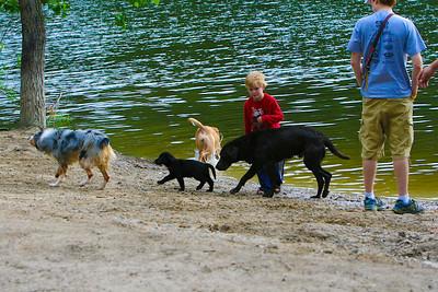 Lansing Dog Park