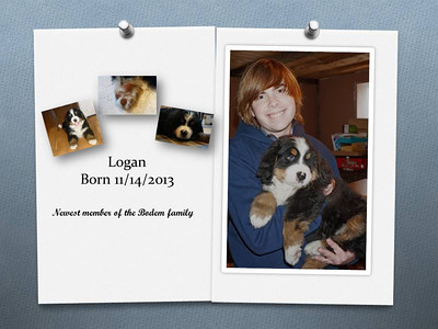 Logan birth announcement