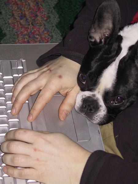 lucy is a helper