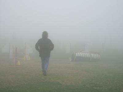 Foggy Dog Agility Practice, Feb 17 2008