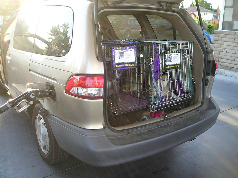 First stop: Fill up on gas. I always open the dog's door so they can check things out.