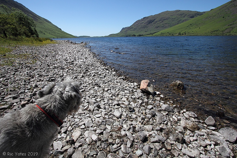 27/6/19 - Wast Water