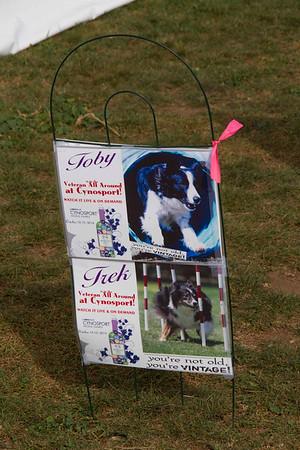 Senior Dog Mementos