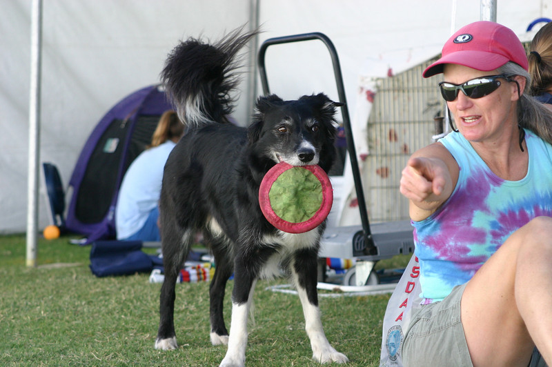 Karey suggests what Bump can do with the frisbee.