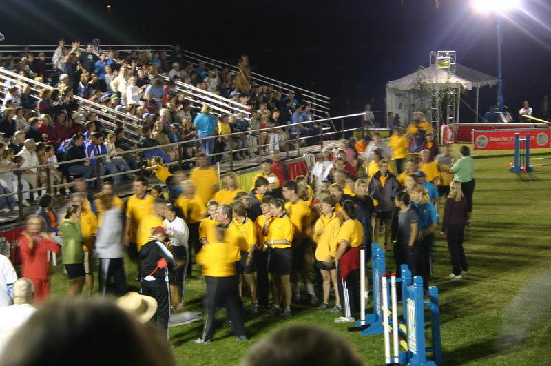 Steeplechase finalists assemble